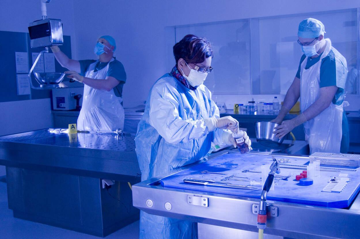 Kennis- en onderzoeksagenda Medisch Forensisch Onderzoek   Wetenschap en  innovatie